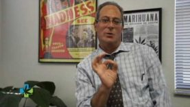 Doctor's Thoughts on the OCU Public Meeting about MMJ in FLA